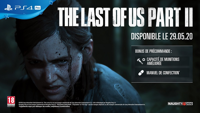 The Last Of Us Part 2 PS4 | Auchan
